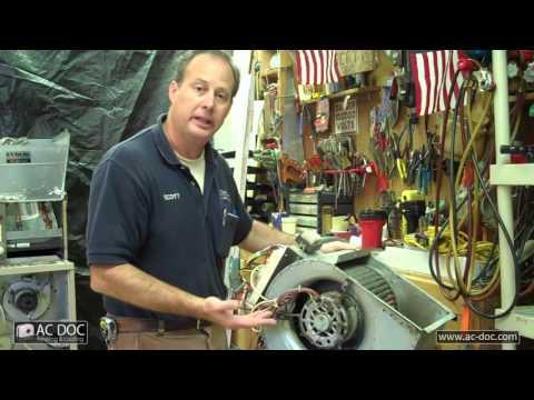 Dirty Furnace Blower & Evaporator Coil - AC Doc - Sterling VA