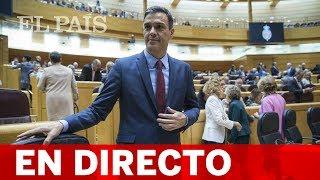 DIRECTO | PEDRO SÁNCHEZ comparece en el SENADO por la INMIGRACIÓN
