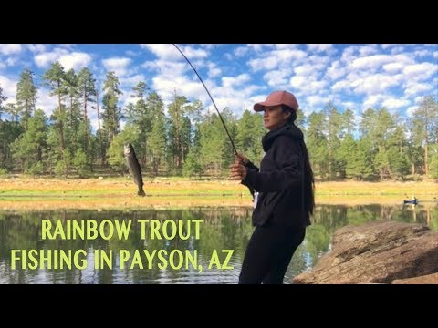 LIFE VLOG: FISHING RAINBOW TROUT AT WILLOW SPRINGS LAKE IN PAYSON  ARIZONA | ARREM