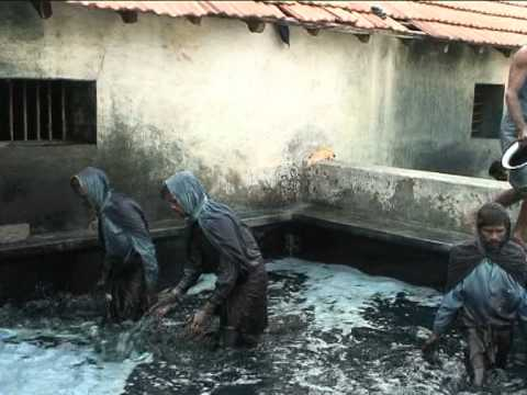 Indigo Dye Extraction