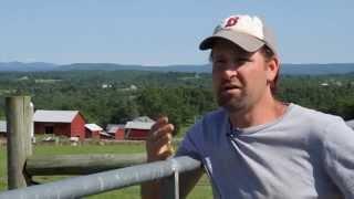 Grass Fed Beef Albany, NY Call: 855-687-2333 Wm. H. Buckley Farm