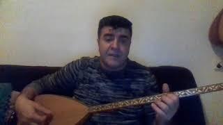 NEDEN SACLARIN BEYAZLAMIS ARKADAS DAMAR