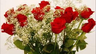 024-un ramo de flores rojas