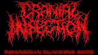 CRANIAL INFECTION   Laceration By Beast