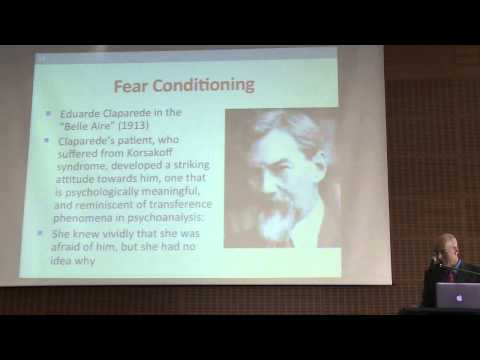 The unconscious and trauma - 12 - Sandler Conference 2014