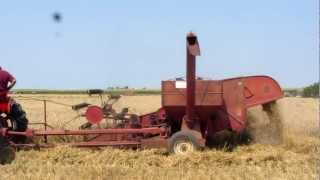 2012 Wheat Harvest Penfield Ilinois, Farmall 400 Tractor, IHC 80 combine, 7/13/12