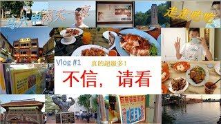 【不懂在拍什么Vlog】马六甲两天一夜走走吃吃~竟然发现??真的是超级多!吓到了!有史以来看到将多!