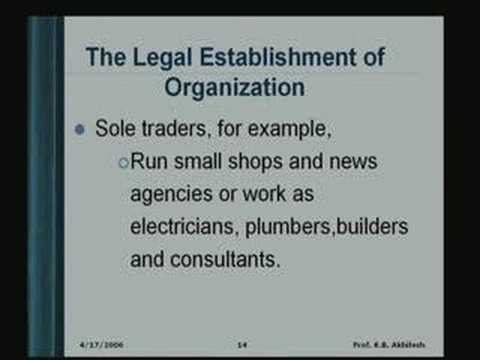 Lecture - 4 Organizing & Organization