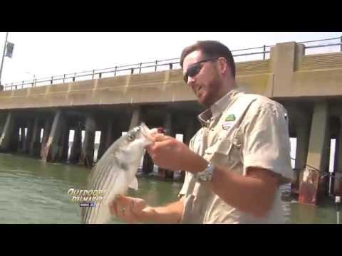 Fishing at the Route 50 Bridge