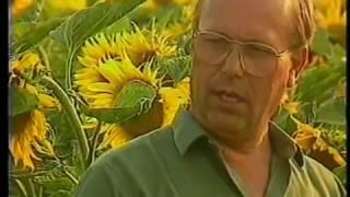 Rudolf Steiner Biologisch Dynamische Landwirtschaft Eine erfolgreiche Umstellung