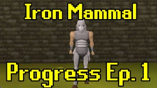Oldschool Runescape - 2007 Iron Man Progress Ep. 1 | Iron Mammal