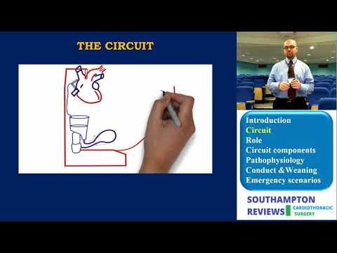 Cardiopulmonary Bypass: Circuit