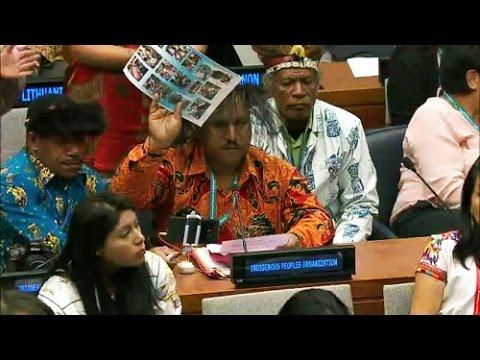 west papua statement at unpfii 15th session.