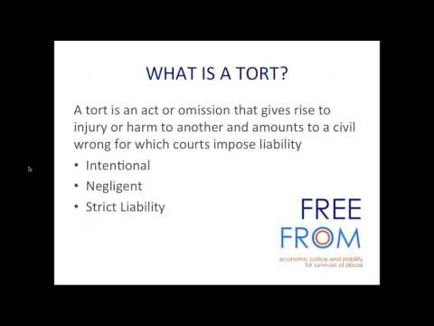 Tort Suits and  Financial Compensation for Domestic Violence