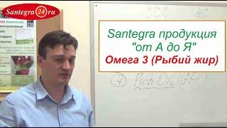 Santegra продукция