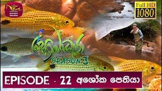 Sobadhara - Sri Lanka Wildlife Documentary | 2019-08-16 | Ashoka Pethiya (අශෝක පෙතියා) Thumbnail
