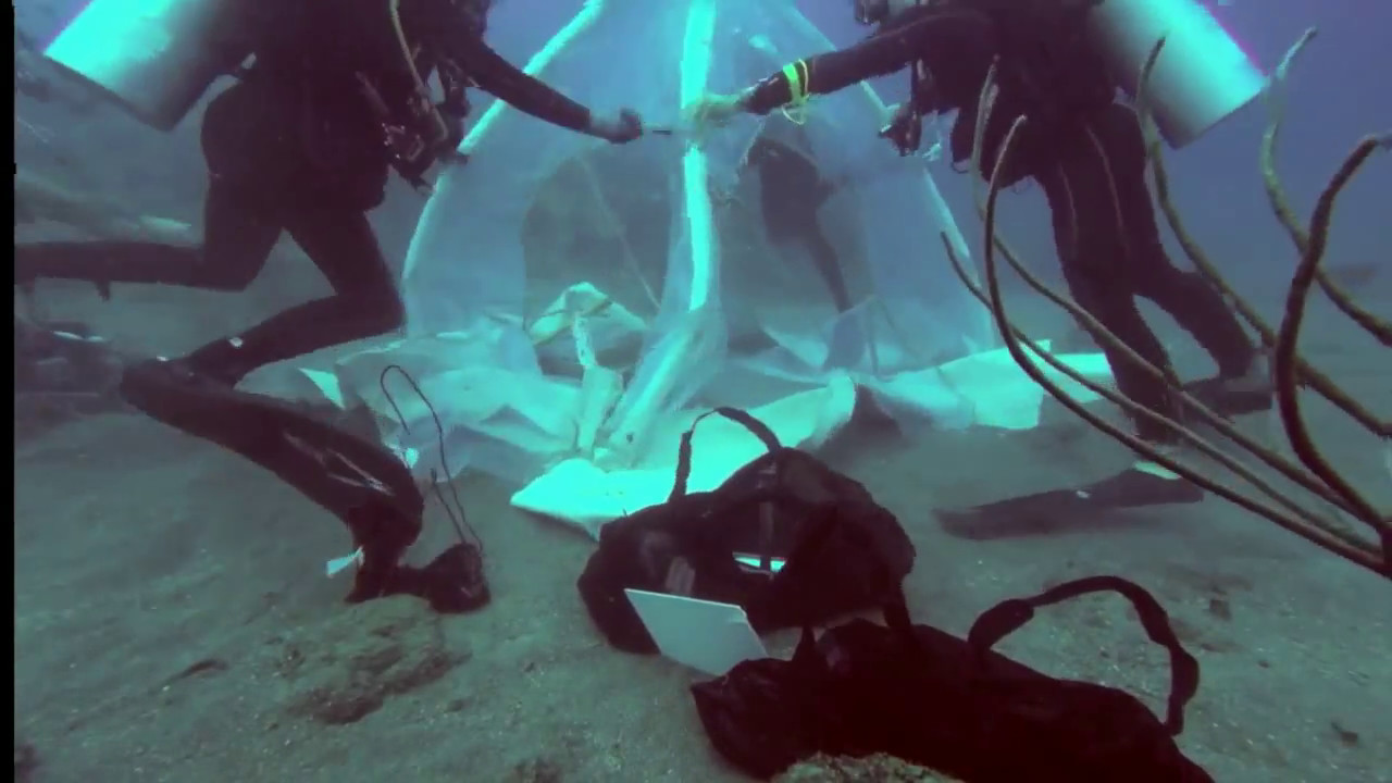 C&ing under Water - pitching the tent & Camping under Water - pitching the tent - YouTube