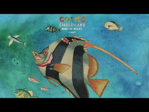 Cosmo Sheldrake ft. Bunty - Mind of Rocks