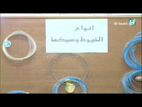 Saudi 2 TV Live Stream
