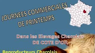 Présentation de Lucand François