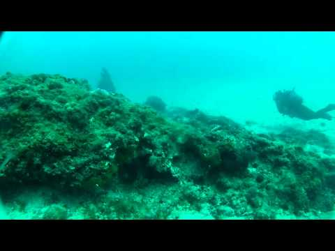 Scuba Dive @ Greece 3-3-2012 [raw footage]
