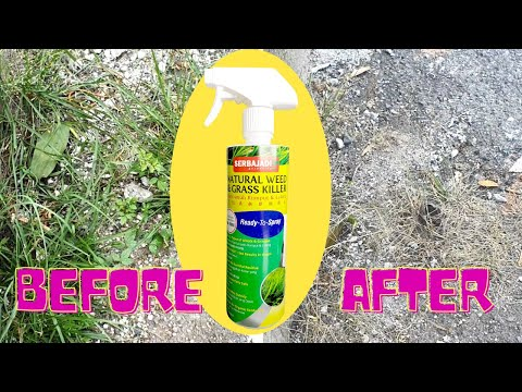 Kill grass and weed around your plant within just 30min !!!