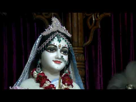Mangal Arati Darshan of  Sri Sri Radha Madhava and Sri Panchatattva 14/01/2019