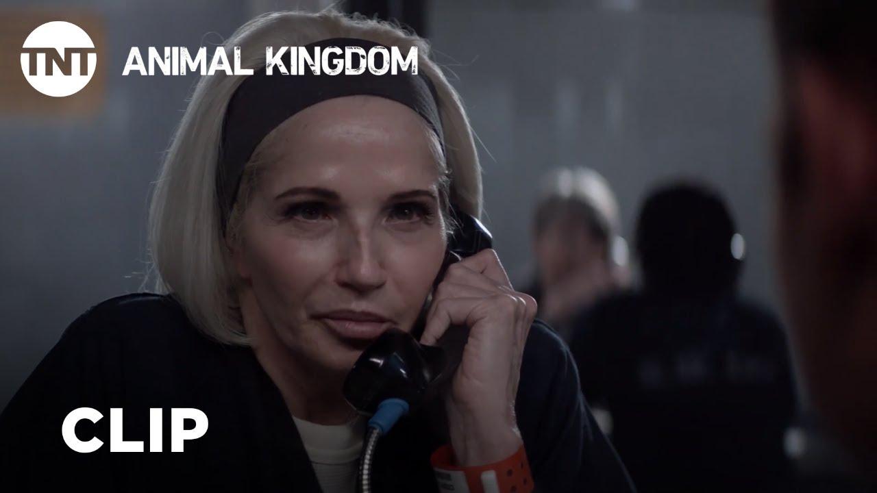 Download Animal Kingdom: Season Rewind - Season 3, Ep. 4 [CLIP] | TNT