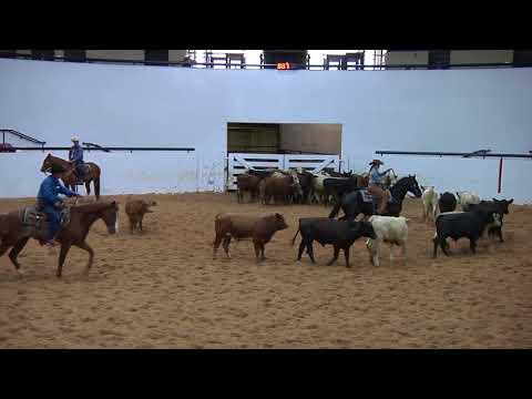 A Mini Brownie & Sarah Armenta | SRCHA Wild Rag Cattle Classic - Youth VRH Ranch Cutting