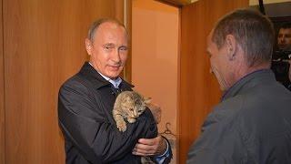 Путин приласкал маленького котёнка