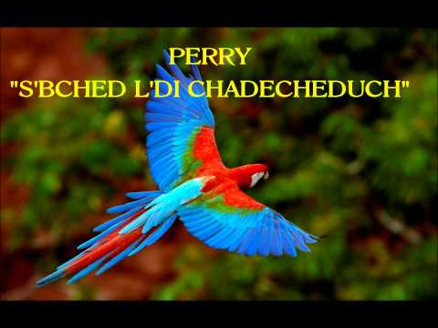 """PERRY """"S'BCH'D L"""