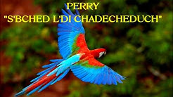 """PERRY """"S'BCH'D L D'CHADECHEDUCH"""""""