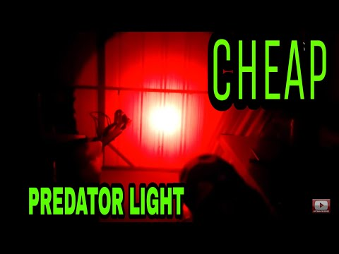 Best Cheap Predator Hunting Flashlight