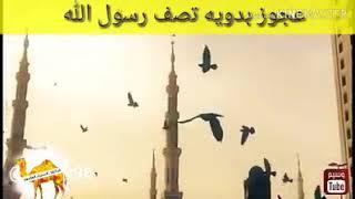 امراة بدوية تصف رسول الله، عدنان المحمد