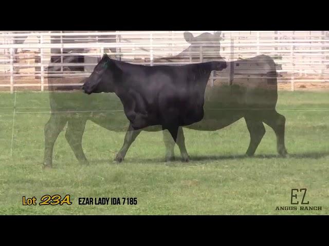 EZ Angus Ranch Lot 23A