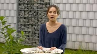 DIY Ideen für Garten und Terrasse mit belton Lackspray – Brunnen, Vogeltränke und Blumenbeet