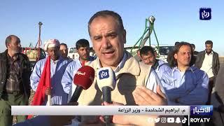 وزارة الزراعة تجري تدريباً على مكافحة الجراد الصحراوي في معان (4/3/2020)