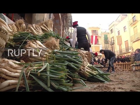 Spain: Man chows down 295 onions in traditional Catalan competition