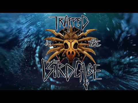 Episode 2 - Trapped in the Birdcage