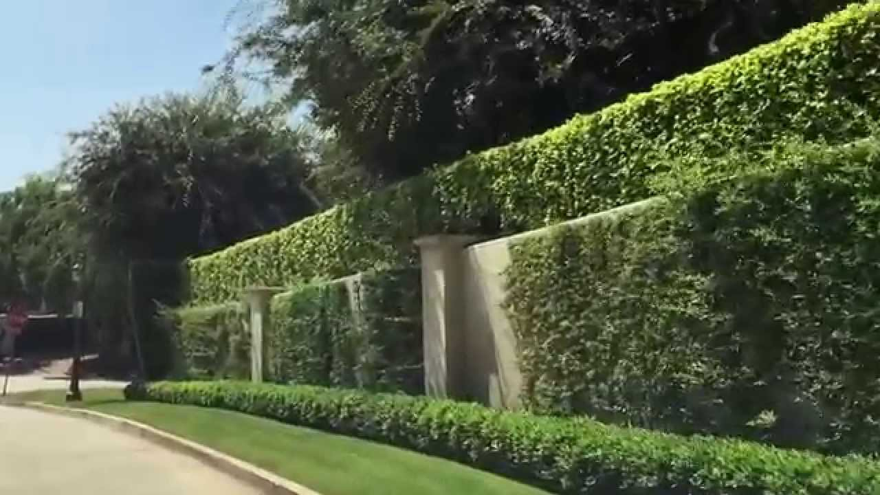 Tour The Finest Street In Los Angeles Mapleton Drive In