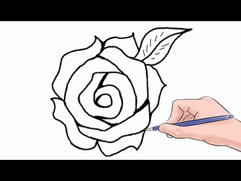 Easy How To Draw A Rose