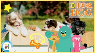 Khan Academy Kids - Kids Learn Letter D for Dog and Puppies Story Book Video