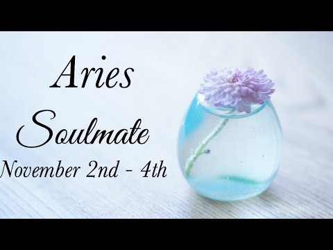 ARIES SOULMATE NOV 2nd - 4th | JUST A LITTLE BIT LONGER - Aries Tarot Love Reading