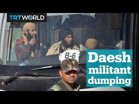 Iraqi PM slams Lebanon for dumping Daesh militants at the border