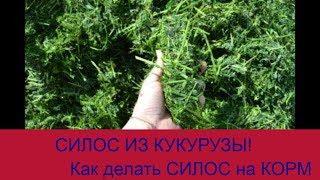 """Силос из кукурузы! """" Зернодробилка молотковая """"КИЭ-5"""