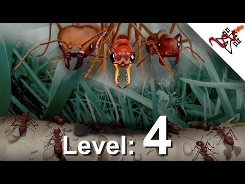 Клип Level - surrounded