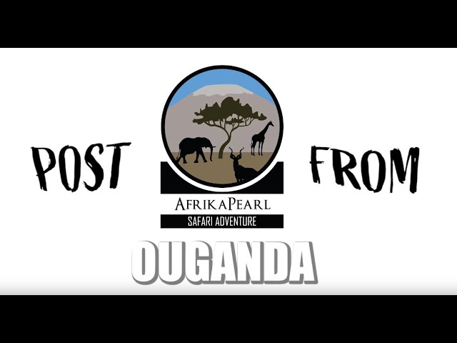 POST FROM OUGANDA