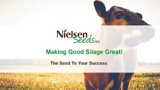 Making Good Silage Great! Feat Alexis Arthur