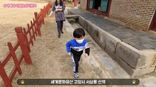 세계문화유산 고양시 조선왕릉 서삼릉 숲속길 산책-41개…