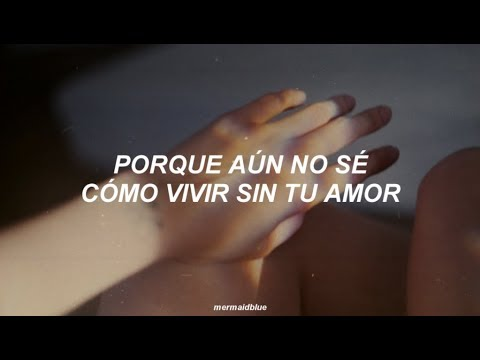「 shakira – antología ✧ letra 」